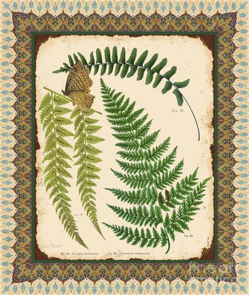 Ferns Digital Art - Fern Tapestry-a by Jean Plout