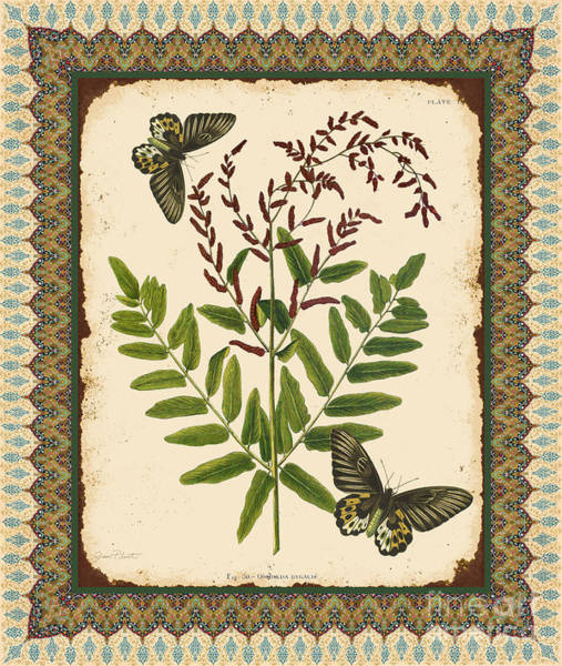 Botanical Digital Art - Fern Tapestry-d by Jean Plout
