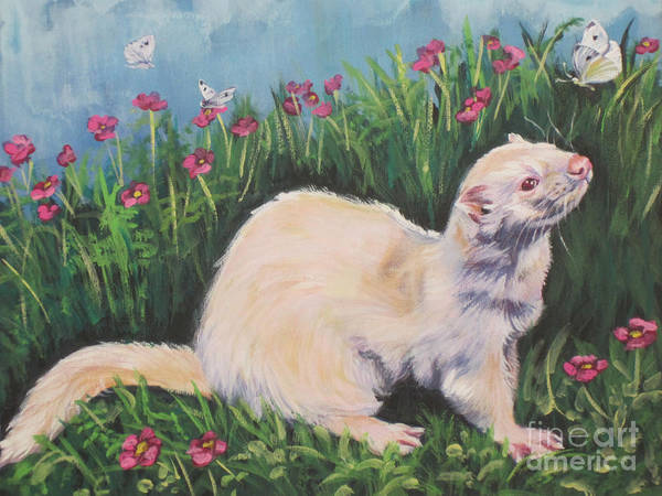 Cabbage White Painting - Ferret by Lee Ann Shepard