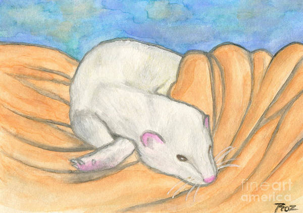 Curl Up Painting - Ferret's Favorite Blanket by Roz Abellera
