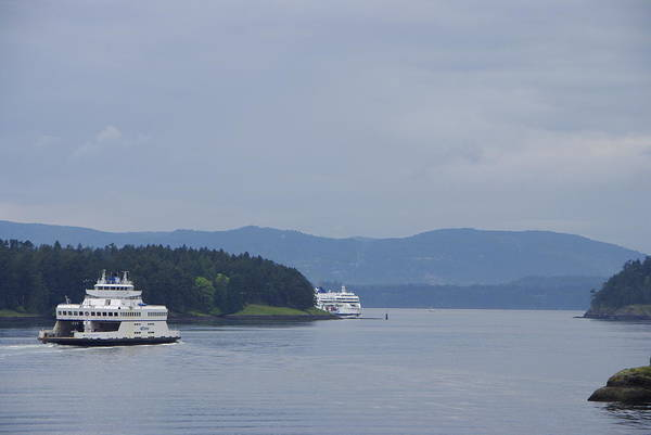 Photograph - Ferries Through Active Pass by Marilyn Wilson
