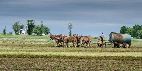 Photograph - Fertilizing by Guy Whiteley