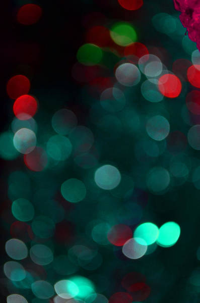Christmass Photograph - Festive Image 3 by Irina Effa
