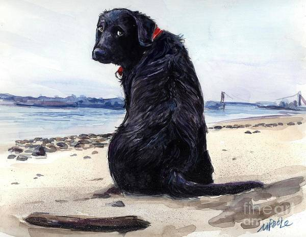 Black Beach Painting - Fetching by Molly Poole