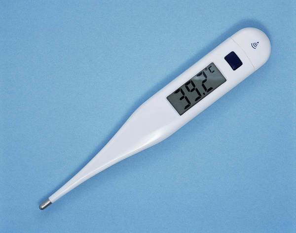 Thermometer Wall Art - Photograph - Fever by Adrienne Hart-davis/science Photo Library