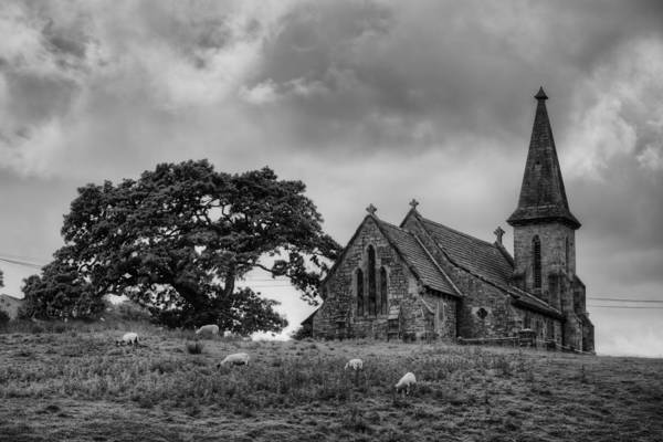 Photograph - Fewston Church And Sheep by Dennis Dame
