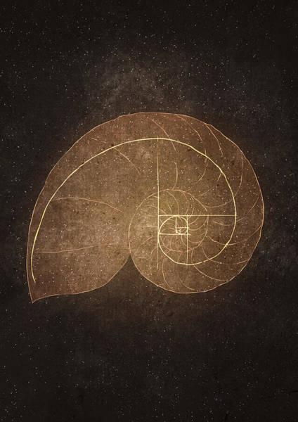 Fibonacci Spiral Digital Art - Fibonacci by Joanna Kleczar