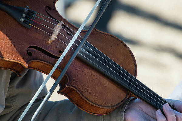 Fiddle Being Played (large Format Sizes Art Print