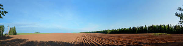 Wall Art - Photograph - Field And Blue Sky by Wladimir Bulgar/science Photo Library