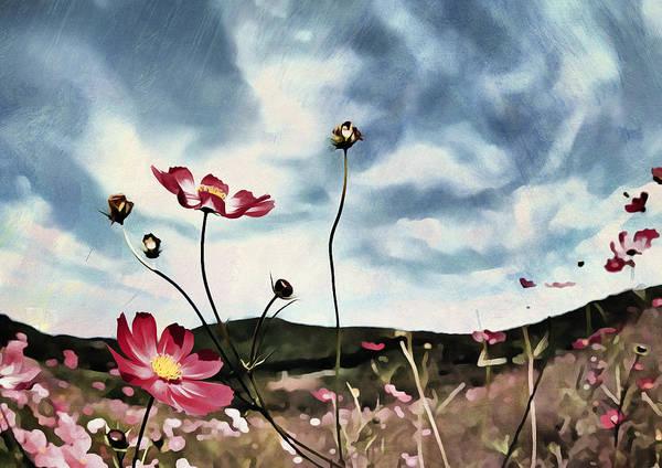 Floristry Photograph - Field Flowers by Georgiana Romanovna