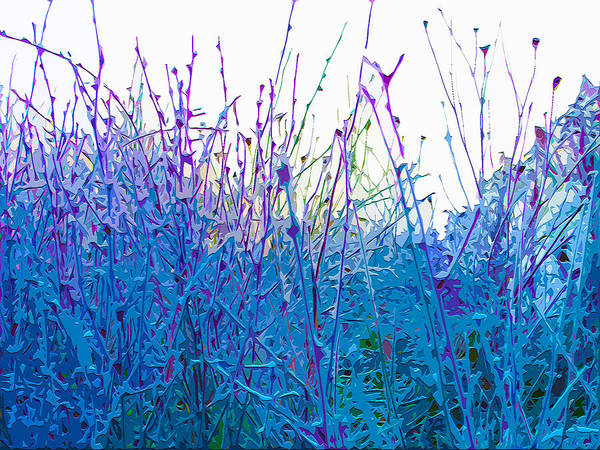 Blades Mixed Media - Field Frost by Brian Stevens