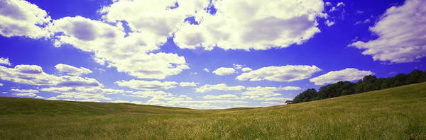 Peacefulness Photograph - Field, Illinois, Usa by Panoramic Images