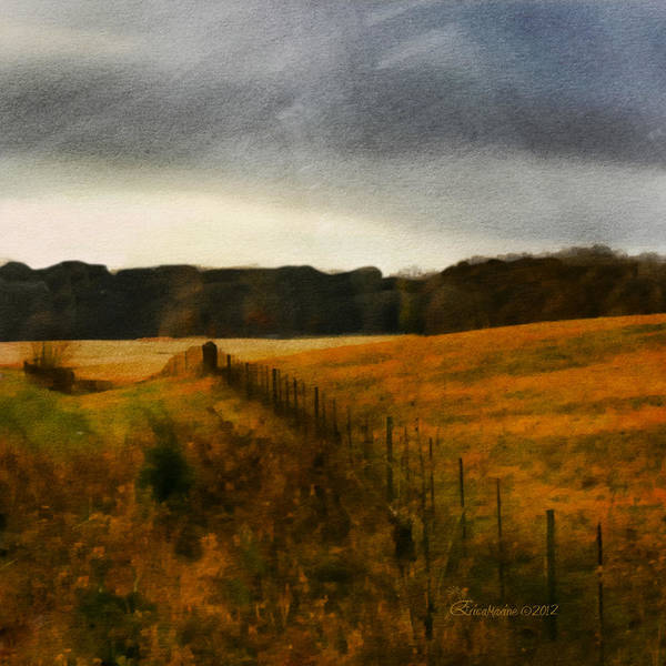 Photograph - Field In Watercolor by Ericamaxine Price