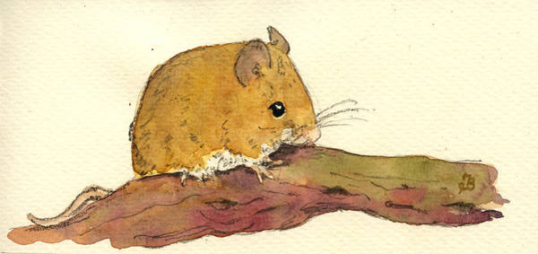 Rodent Wall Art - Painting - Field Mouse by Juan  Bosco
