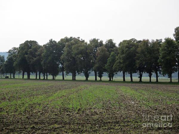 Photograph - Field Near Munich by Chani Demuijlder