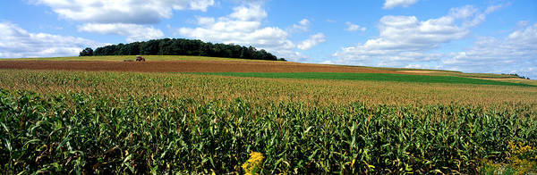 Thicket Photograph - Field Of Corn With Tractor In Distance by Panoramic Images
