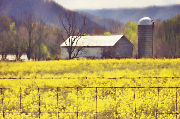 Wall Art - Photograph - Field Of Dreams by Kathy Jennings