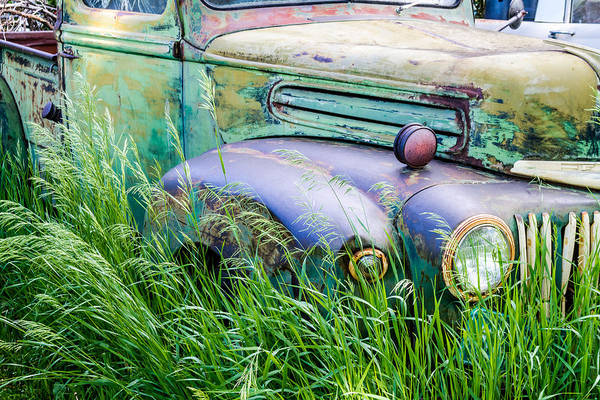 Photograph - Field Of Rust by Teri Virbickis