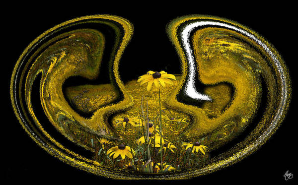 Photograph - Field Of Susans Mindscape by Wayne King