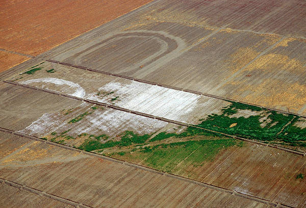 San Joaquin Valley Photograph - Field Salinisation by Scott Bauer/us Department Of Agriculture/science Photo Library
