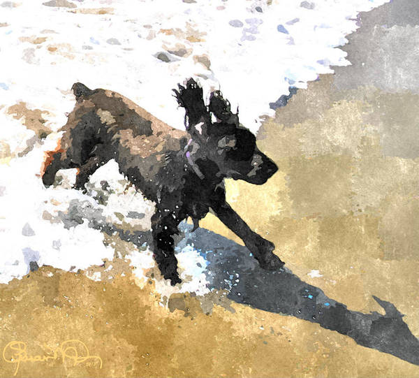 Field Spaniel Joy Art Print