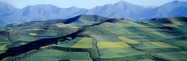 Wall Art - Photograph - Fields, Farm, Qinghai Province, China by Panoramic Images