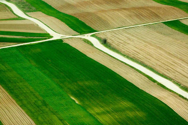 Crossroads Photograph - Fields In Spring by Davorin Mance