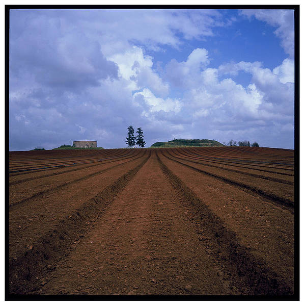 Photograph - Fields Of Hod Hasharon by Dubi Roman
