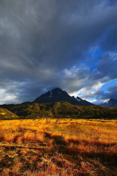 Patagonia Photograph - Fields Of Patagonia 2 by FireFlux Studios