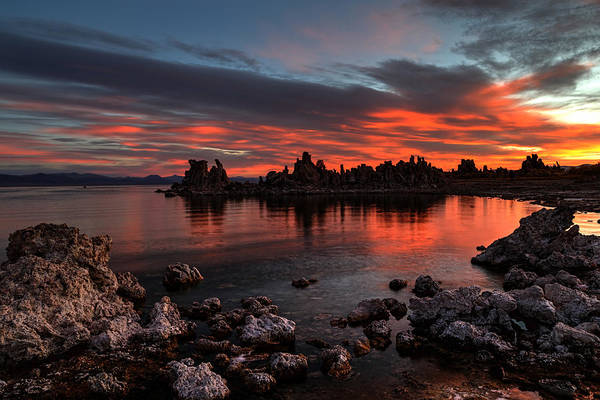 Photograph - Fiery Mono Lake by Wes and Dotty Weber
