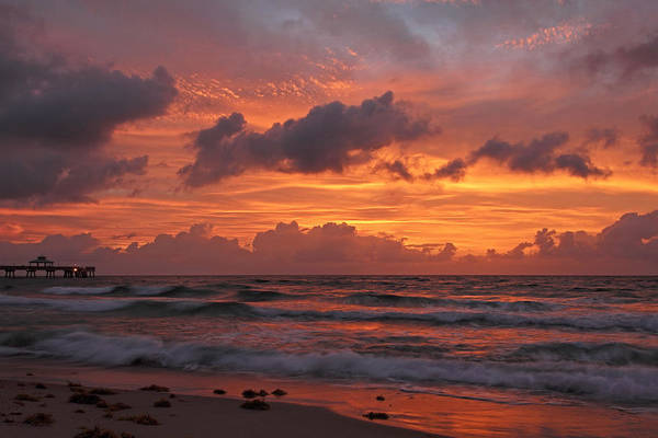 Photograph - Fiery Sunrise by Theo OConnor