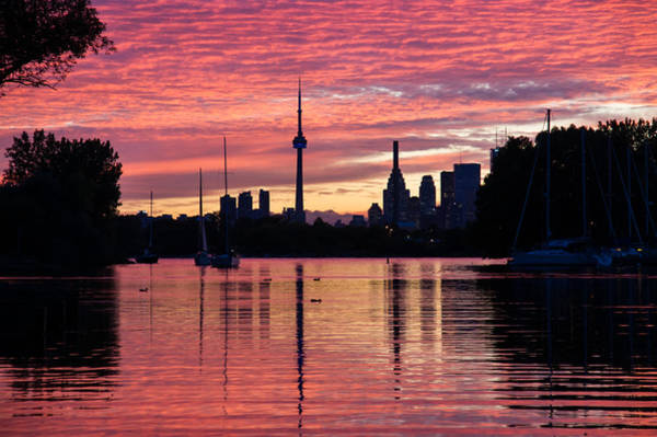 Photograph - Fiery Sunset - Downtown Toronto Skyline With Sailboats by Georgia Mizuleva