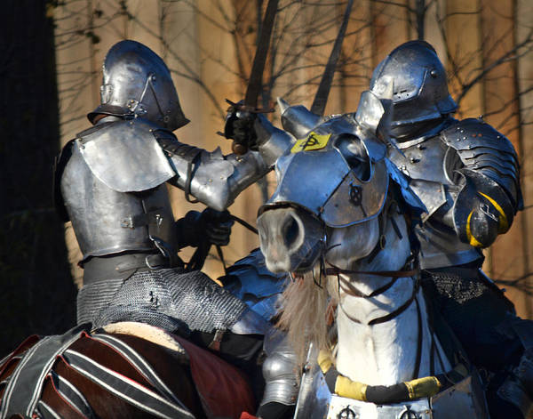 Photograph - Fighting Knights by Maggy Marsh