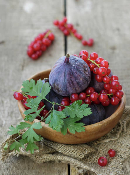 Currants Photograph - Figs And Red Currant by Julia Khusainova