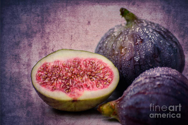 Photograph - Figs by Hannes Cmarits