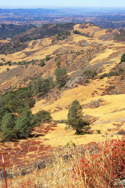 Figueroa Mountain Photograph - Figueroa Mountain by Art Block Collections