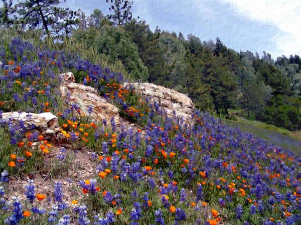 Wild Poppies Digital Art - Figueroa Mountain Splendor by Kurt Van Wagner