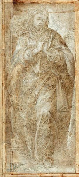 Prepare Drawing - Filippino Lippi Italian, 1457 - 1504, Standing Woman by Quint Lox