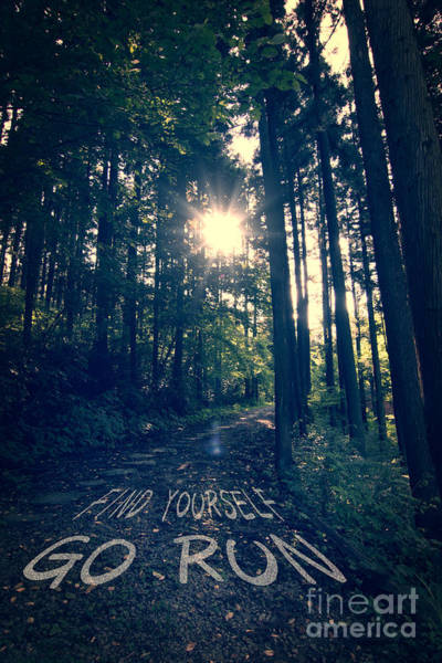 Photograph - Find Yourself Go Run No. 6 - Forest With Sun Flare by Beverly Claire Kaiya