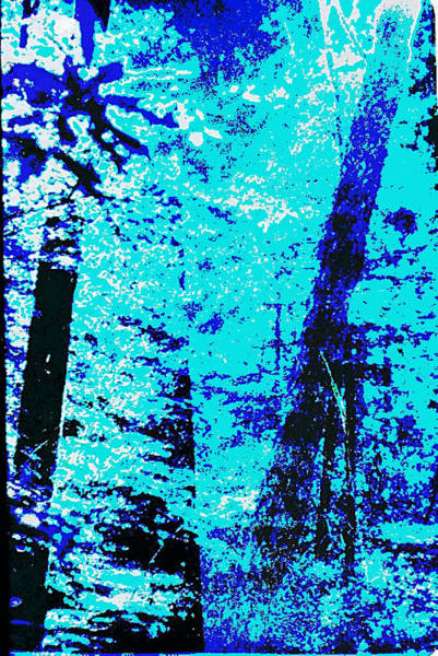 Painting - Fine Art Original Digital Forest Scene Maryland by G Linsenmayer