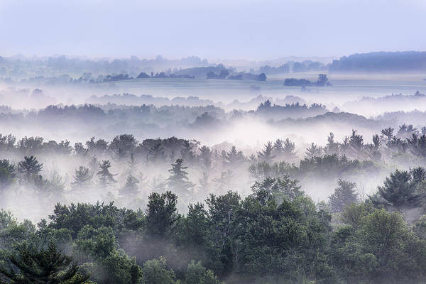Hemlock Photograph - Finger Lakes Morning by Michele Steffey