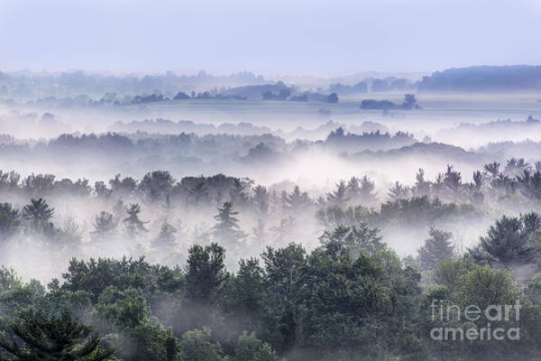 Upstate New York Wall Art - Photograph - Finger Lakes Morning by Michele Steffey