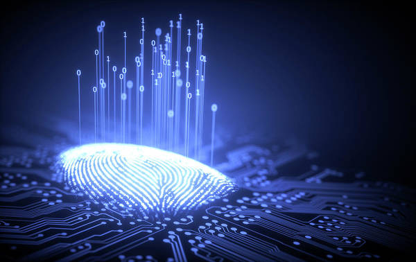 Photograph - Fingerprint And Circuit Board by Ktsdesign/science Photo Library