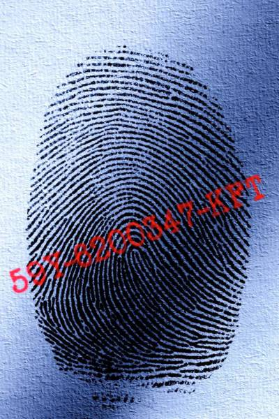 Id Wall Art - Photograph - Fingerprint Identification by Pascal Broze/reporters/science Photo Library