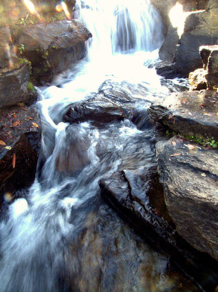 Photograph - Finlay Park Waterfall by Lisa Wooten