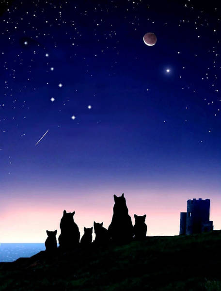 Sea Story Digital Art - Fiona And Fergus With Kitten Star Gazing Over The Irish Sea by Kathleen Horner