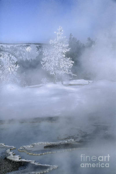 Wall Art - Photograph - Fire And Ice II - Yellowstone by Sandra Bronstein