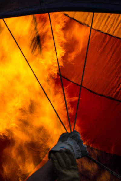 Photograph - Fire From Within by Colleen Coccia