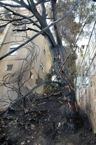 Surroundings Photograph - Fire Hazard In An Urban Surrounding by Photostock-israel/science Photo Library