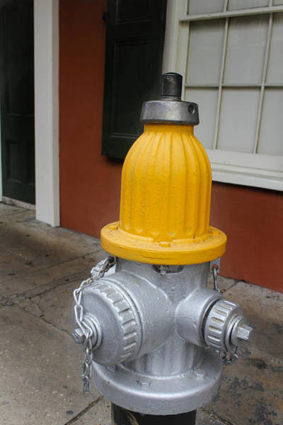 Photograph - Fire Hydrant 01 by Carlos Diaz